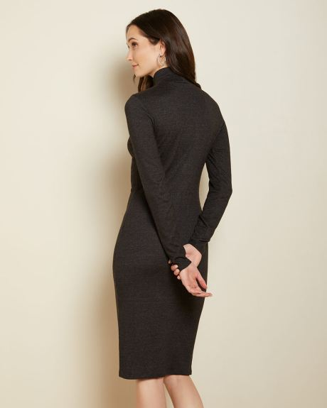 Bodycon Turtleneck brushed knit dress